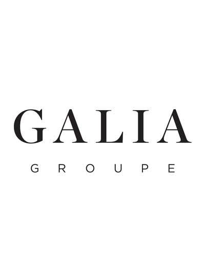 Galia group logo sponsor of the MiG Prize